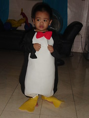 My baby penguin