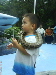 with snake
