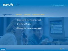 Metlife Micro Site (Level Design Studio) Tags: motion animation interactive metlife