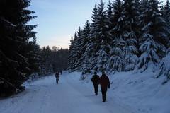Anstieg zum kleinen Feldberg (karsten13) Tags: feldberg 29112008