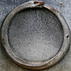 Ouroboros (Uroborus) (Leo Reynolds) Tags: cemetery canon eos iso100 snake f45 squaredcircle serpent 135mm 30d ouroboros cemeterysymbol uroborus sqparis 0ev cemeteryperelachaise hpexif groupcemeterysymbolism 0022sec sqrandom xsquarex sqset032 xleol30x xratio1x1x xxx2008xxx