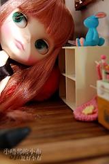 Dollhouse-10