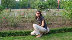 vat trom hoa (nhoccon.oliver) Tags: hồng vườn