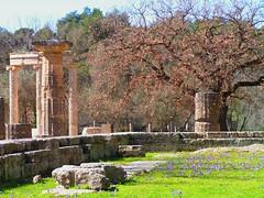 Temple of Hera at Olympia (g.mcdowell) Tags: olympia ancientgreece templeofhera minimester