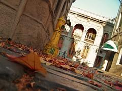 Entre hojas (0_miradas_0) Tags: hojas y otoo concha fachada barrio toro grifo secas tpico