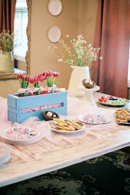ava's party 13