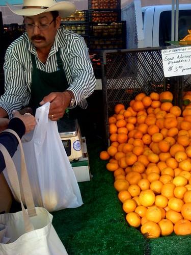 Organic Citrus and Avocado
