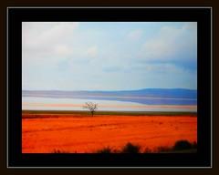 Turkish County Side (janetfo747 ~ Pray for Peace) Tags: blue sky orange tree water turkey countryside salt 2006 explore lonely marsh ankara saltflat blueribbonwinner mywinners impressedbeauty diamondclassphotographer theperfectphotographer goldstaraward qualitypixels