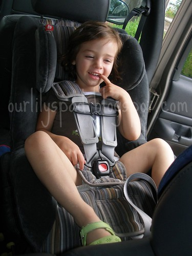 Toddler extended rearfacing in carseat