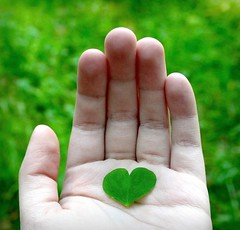 (JenniPenni) Tags: green love nature hand heart save clover shape enviromental sorryforthebadquality busyagain