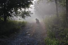 Hnak in the fog