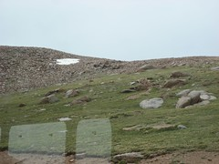 The landscape above the timberline. (07/06/2008)