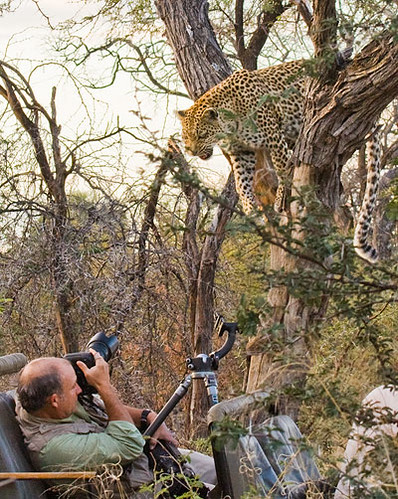 Me with Leopard
