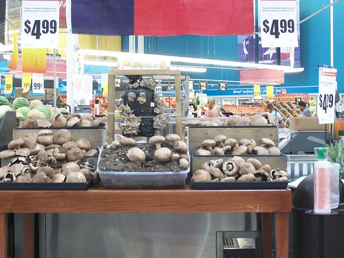 'shrooms at H-E-B