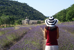 Lavande (the bbp) Tags: sun france church girl hat lavender chiesa chapeau provence sole lavande francia cappello ragazza lavanda abbayedesenanque abazia thebbp aplusphoto wowiekazowie