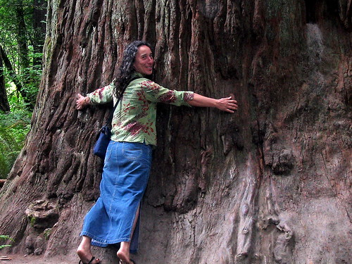 Katherine with Redwood