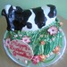 Dairy Cow Cake