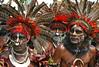 Goroka Show (Bertrand Linet) Tags: portrait shells coral festival facepainting feathers feather shell makeup tribal papou tribes png tribe papuanewguinea papua ethnic kina maquillage visage plumes headdress singsing plume huli papu tribu oceania goroka etnico pidgin tribus oceanie ethnique papuaneuguinea papuanuovaguinea パプアニューギニア gorokashow papuan papouasie melanesian papuans 巴布亞紐幾內亞巴布亚纽几内亚 papuásianovaguiné papúanuevaguine papuanyaguinea wigmen hulis παπούανέαγουινέα папуановаягвинея papuanewguineapicture papuanewguineapictures papuanewguineanpeople remotetribe papúanuevaguinea makeupgoroka bertrandlinet