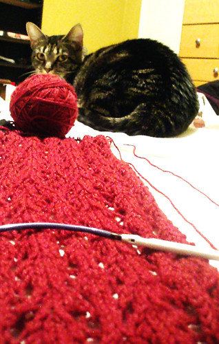 WIP_Cat's Paw Lace