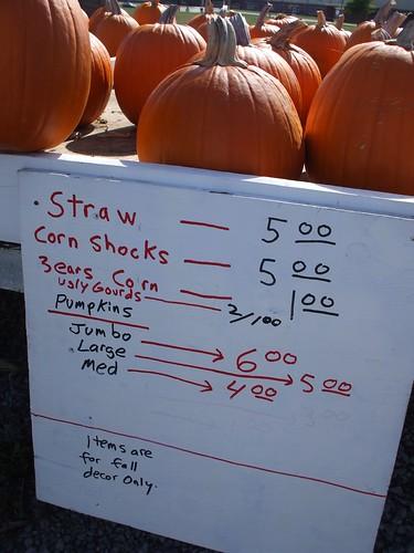 pumpkin stand 012