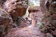 Risalendo Fiumedinisi (SignorG) Tags: d50 nikon valle natura cai montagna wwf italiano gruppo gola giarre alpino escursione fiumedinisi ysplix flickrsicilia