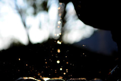 Bokeh drops... Bokeh splash... (.I Travel East.) Tags: nikon bokeh handheld hbw backyardshot d700 nikond700 happybokehwednesday bokehs bokehdrops fountainbokehs bokehsplash bokehdropsbokehsplash