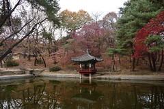 Seoul - Coree du Sud (TheFunnyBird) Tags: du seoul coree sud