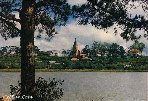 DALAT7 by you.