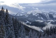 Near Niederalpl in Austria (Twilight Tea) Tags: austria december 2008 styria aficionados  niederalpl flickrdiamond mrzstegalps
