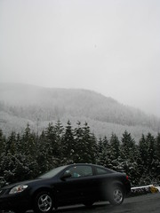 On the frosty road (librarychik) Tags: bc britishcolumbia sointula malcolmisland