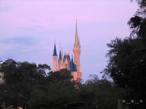 IMG_6879-Magic-Kingdom-pastel-castle-01
