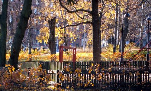 Töölönlahden puisto by Anna Amnell