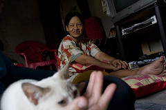 Cat Power (whiteboardjournal) Tags: pet indonesia kitten islam religion livingroom palembang convert chinesemuslim muallaf southsumatra chinesewoman5054yearsold