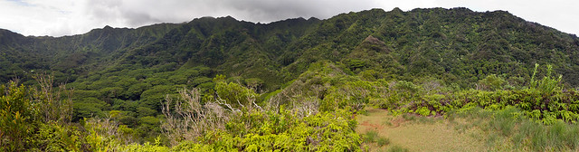 Puu Pia Panorama 02