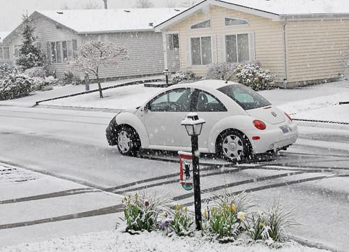April snow 01