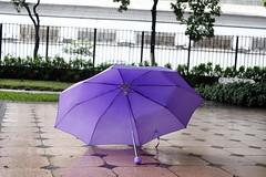 (EduolimA) Tags: umbrela guardachuva