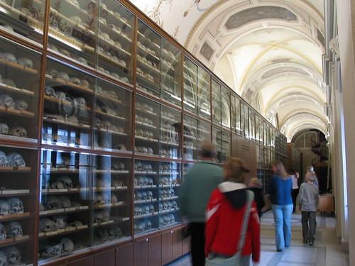 Wiens zweitgrößter Friedhof 2