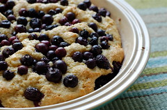 blueberry buttermilk cake. (thebakingbird) Tags: cake baking lemon blueberries buttermilk applesforjam
