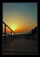 "Accesso al tramonto... (fabilly74) Tags: sunset sea beach tramonto mare greatshot spiaggia lifeshot blueribbonwinner flickrsbest golddragon mywinners platinumphoto anawesomeshot impressedbeauty aplusphoto superphotos diamondclassphotographer flickrdiamond wonderfulworldmix excapture goldstaraward spiritofphotography fabcap ""nikonflickraward"" topqualityimagesonly"