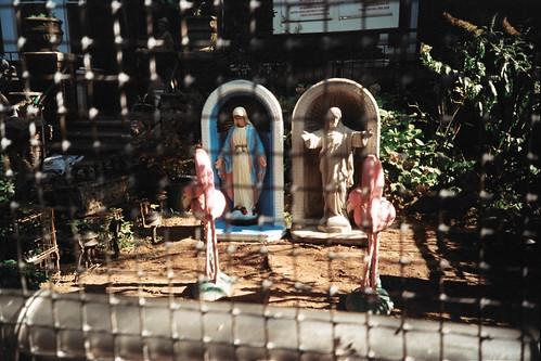 Mary, Jesus & some flamingos.
