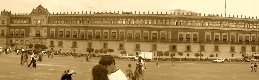 Regreso al origen: un aguila paseando tranquila frente al Palacio Nacional en México.