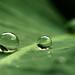 after the rain #2 von M3R