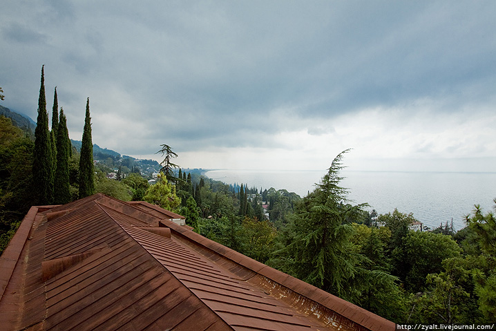Sea Roof