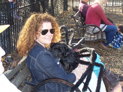 Spider-Dog pretty owner