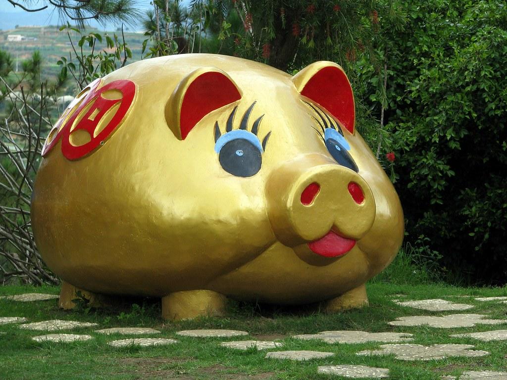 Vietnam, Dalat - Huge pig