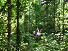 Tarzán de la Selva.... (BlogCochaJovenFlickr) Tags: de ecuador selva amaznica