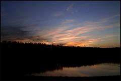 Almost a Sunset (Kirsten M Lentoft) Tags: trees sunset sky reflection water clouds denmark pond silhouettes albertslund vestskoven diamondclassphotographer life~asiseeit kirstenmlentoft