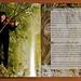CD-Cover Celarda - Katharina
