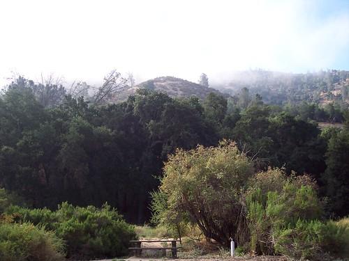 Pinnacles Campground California Alltrails Com