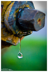 Water Droplet (Frederick Van Johnson) Tags: sanfrancisco california travel november usa podcast blur west macro water up field metal closeup america hydrant lens photography this coast nikon focus rust san francisco dof close treasureisland pacific image bokeh united north johnson drop drip micro frame photowalk droplet week states van leak 2008 depth magnify frederick leaking magnification d700 thisweekinphotography frederickvanjohnson